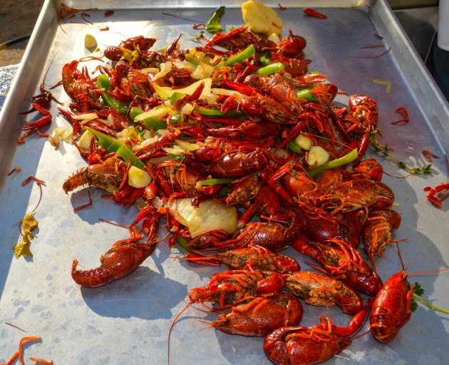 Crawfish ready for action