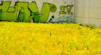 VitNov14 Lowres-24